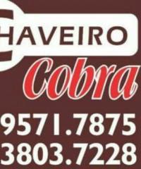 Chaveiro Cobra – Chaveiro Em Osasco, Barueri, Cotia, Alphavile, São Paulo E Grande São Paulo