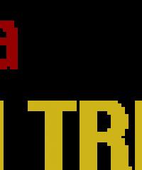 Vidraçaria Jd. Tremembé